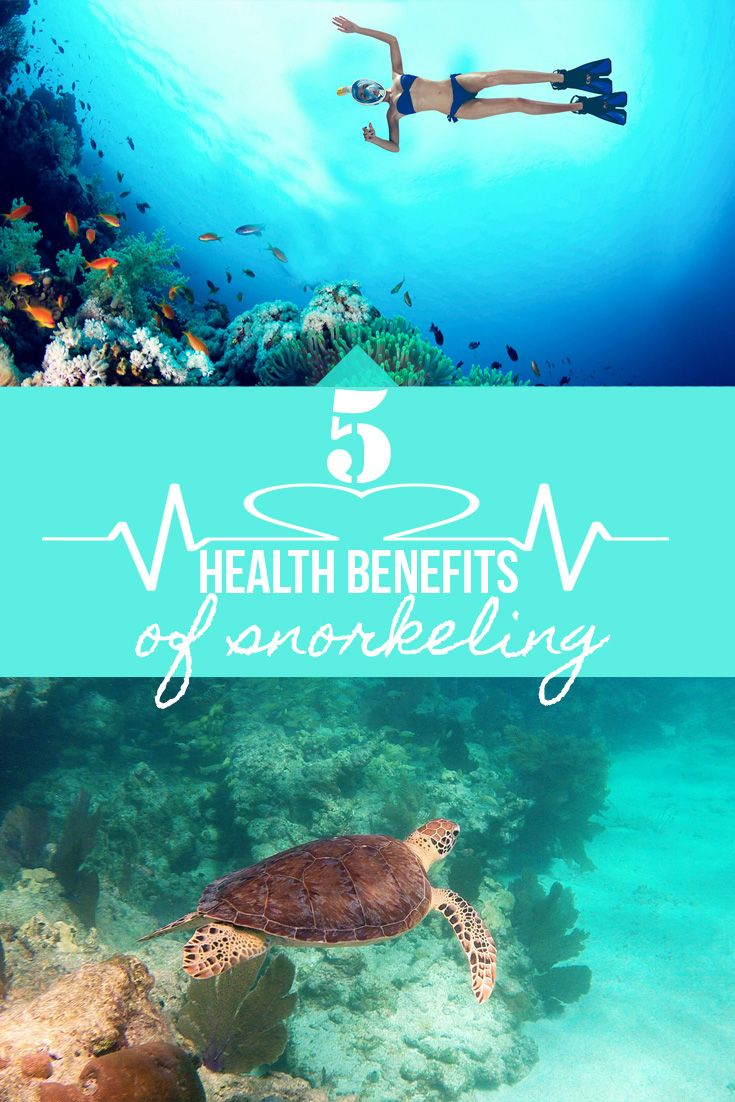 Snorkeling is not only fun, it's also great for your health! Read about the top 5 health benefits you get from snorkeling.