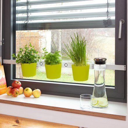 Kräuterleiter Vega grün online kaufen ➜ Bestellen Sie Kräuterleiter Vega grün für nur 39,99€ im design3000.de Online Shop - versandkostenfreie Lieferung ab 50€!