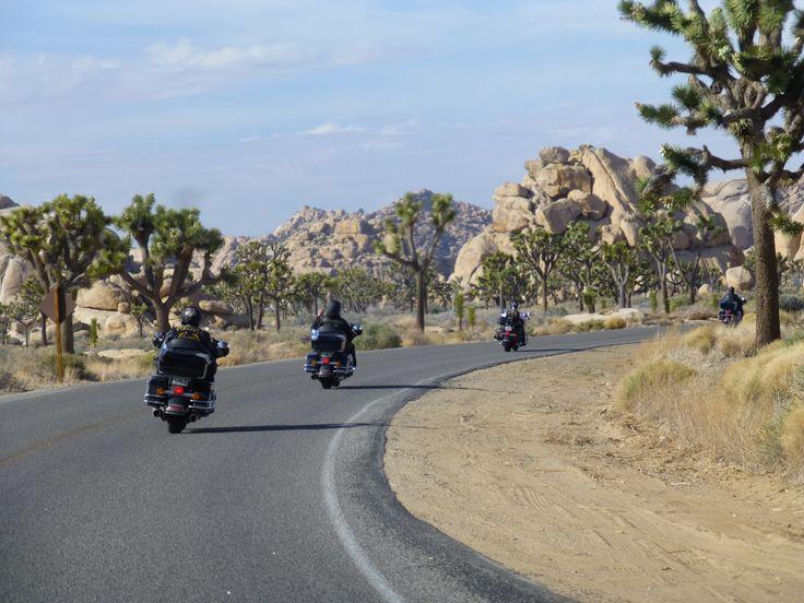 Joshua Tree National Park... California.