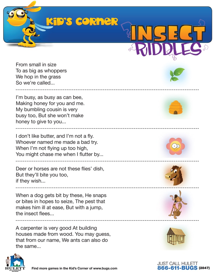 Insect unit website scout ideas kids corner insect riddles school