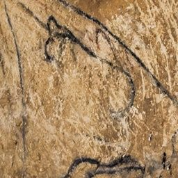 Cerca del arte parietal | La Grotte Chauvet-Pont d'Arc - Ardèche, France