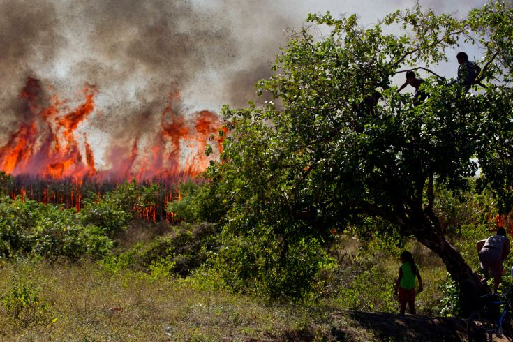 Jan. 19, 2014. Villagers observe as the sugarcane fields belonging to Ingenio San Antonio, ISA, burn for the harvest in Chichigalpa, Nicaragua