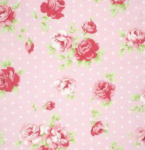Lulu rosas de Tanya Whelan Lilly en rosa de la yarda