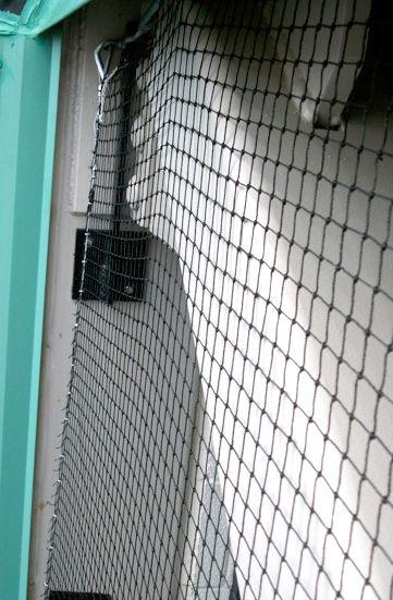 #Bird_Pest_Control.For more information, please visit- http://www.elitebird.com.au