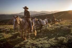 Vahşi Atlar - Wild Horses izle