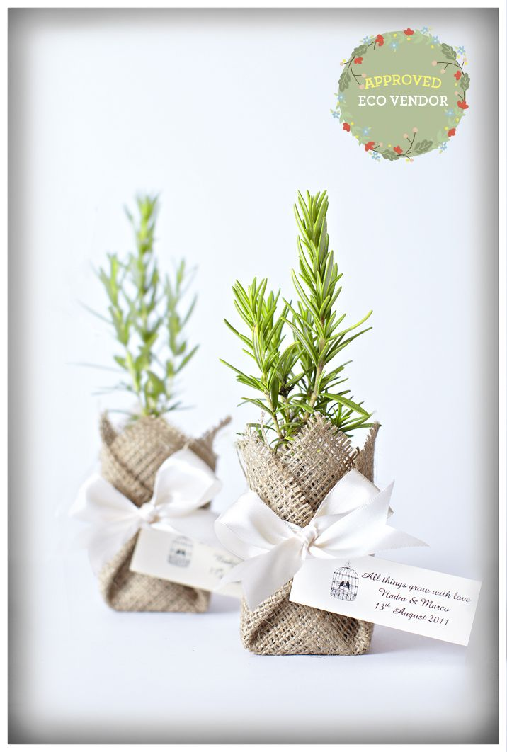 Fabulous plant wedding favours. Delivered to NSW, VIC, SA and QLD by Flourish Bomboniere. #ecowedding #ecofavours #ecofavors #ecobomboniere