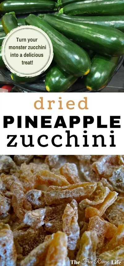 Too much zucchini? Use up that extra summer squash by adding pineapple juice and your dehydrator and you have a delicious treat of pineapple zucchini!