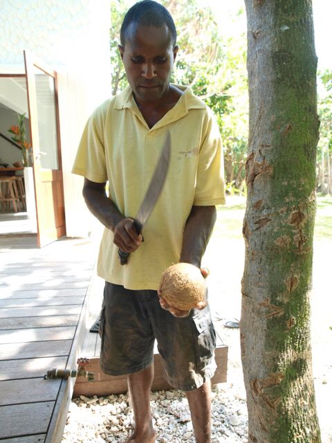 Coconut, a staple food of the islands and here at the Villa we are lucky to have Sammi to crack open one or two every day. The fresh water, the quencher of thirst. #EtonReef #coconut #islandlife #southpacific #Paradise #yum #paleo #coconuttree #delicious #foodheaven