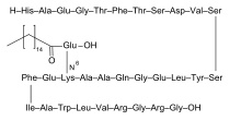 Liraglutide (NN2211), marketed under the brand name Victoza, is a long-acting glucagon-like peptide-1 agonist (GLP-1 agonist)