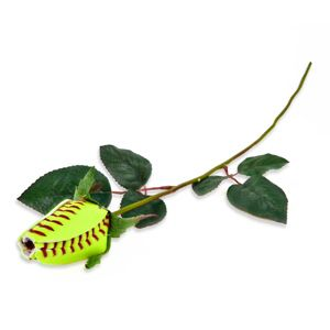 You can find these cool softball roses online. They make them for a number of sports. What a cool gift idea for your favorite athlete!