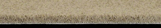 Carpet Details Page | HGTV Home Flooring by Shaw | Let's Do The Twist TV108 Butter Bean