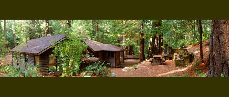 Outdoor kitchen!!  Leonard Lake Reserve - Sequoia House
