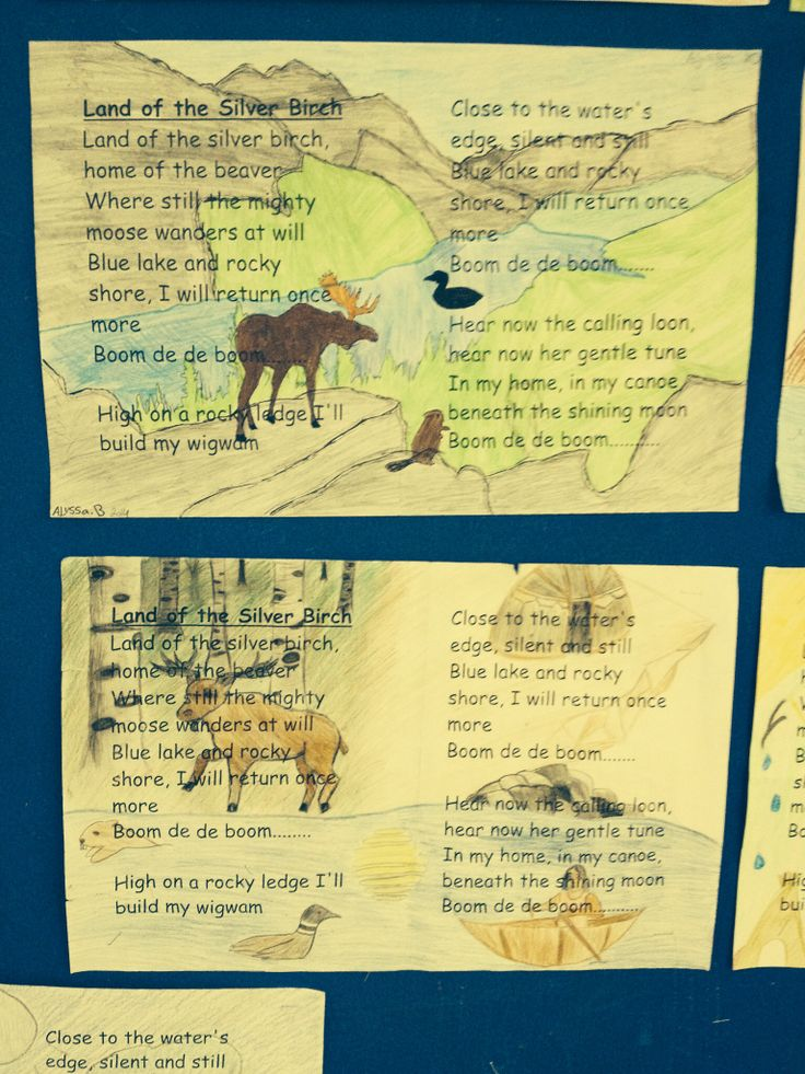 Land of the silver birch student art
