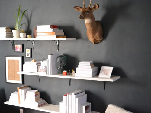 mounted real deer head; a vintage find with floating white bookshelves