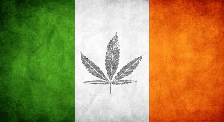 Ireland's Minister For Health Plans To Take Action On Medical Marijuana In January