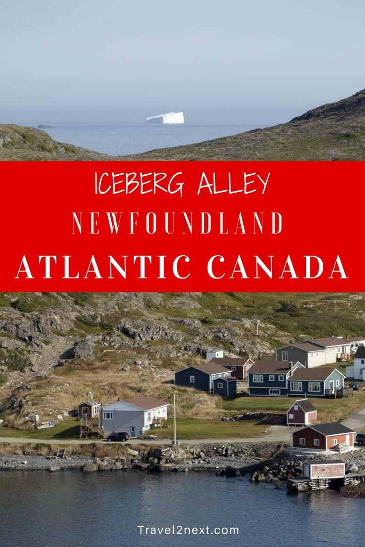iceberg alley newfoundland Newfoundland tourism   iceberg alley
