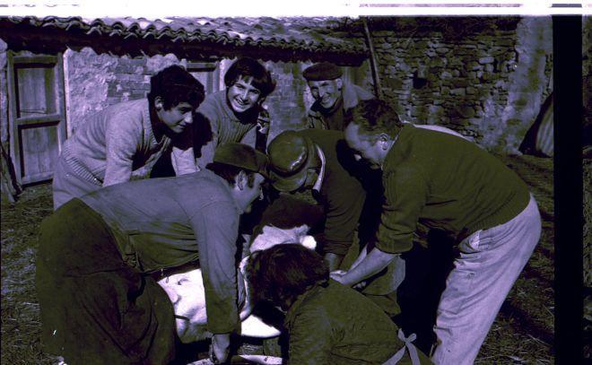 matanza en La Hoz de la Vieja (Teruel) España