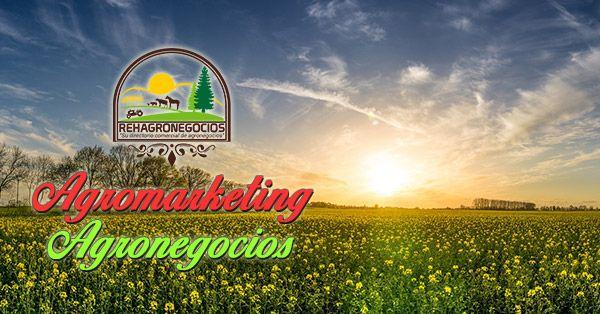 (QUÉ ES EL AGROMARKETING) QUÉ ES EL AGROMARKETING  AGROMARKETING: Qué es y por qué es importante para quienes compran, venden y buscan alianzas en el medio de los agronegocios  ¿Qué es el Agromarketing? El agromarketing es una variante del actual Marketing Digital y este a su vez es una evolución del Mercadeo ...  https://goo.gl/8VLsY5  Suscríbete para recibir nuestros correos informativos 👉 https://goo.gl/ggqUCi 👈