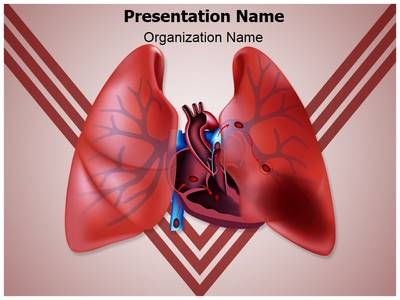 Circulatory Pulmonary Embolism Powerpoint Template is one of the best PowerPoint templates by EditableTemplates.com. #EditableTemplates #PowerPoint #Pulmonary #Lung #Respiration #Cardiovascular