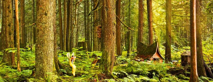The Enchanted Forest | Revelstoke BC Attractions - Revelstoke BC Canada