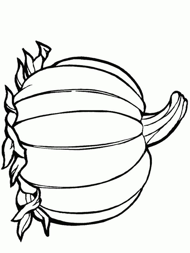Pumpkin Template Colouring Pages 253543 Blank Coloring
