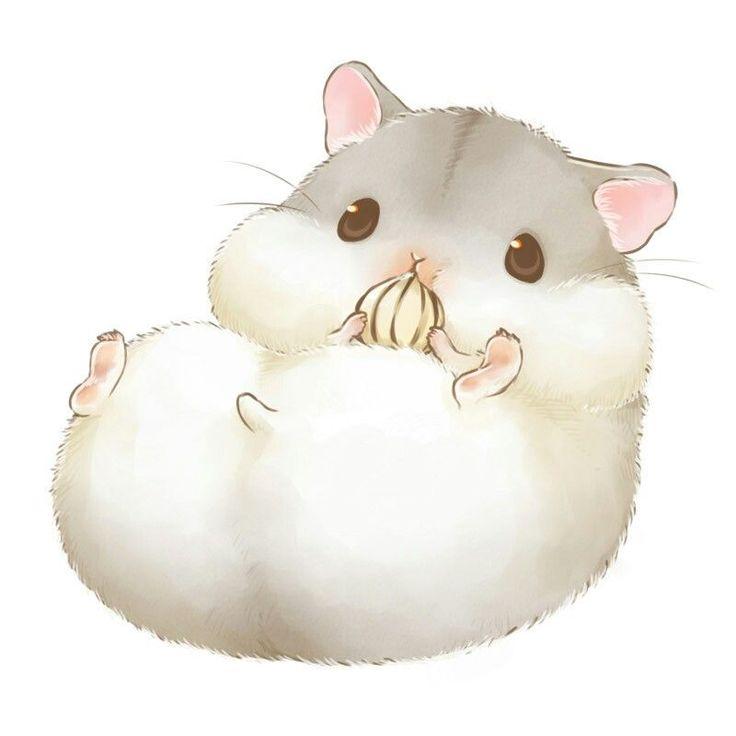 Милые рисунки хомячки