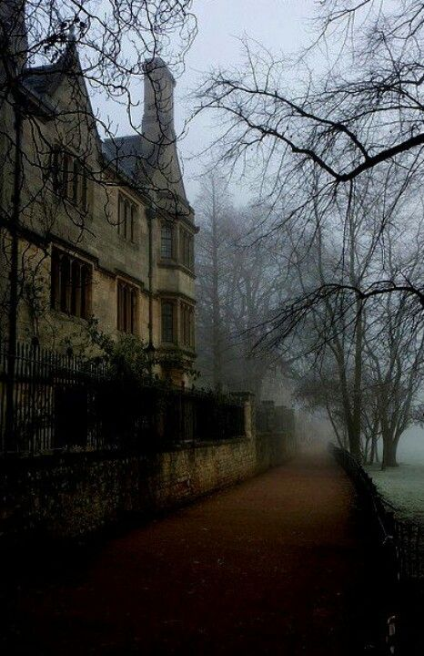 """coffee-and-wood: """"Oxford """""""