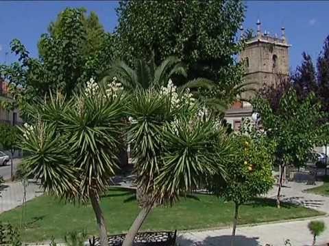[10] Ruta Vía de la Plata - Casar de Cáceres - Extremadura