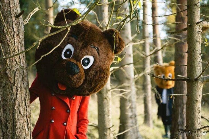 Foto em meio a floresta