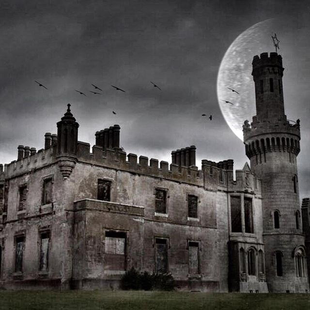 Ducketts Grove Carlow, Ireland. A Gothic revival castle, home now to 100's of crows. A cacophony of squeaking shattered the quiet. Taken with my Canon 50d, transferred to my iPhone, opened in Snapseed, desaturated, then opened in Alien Sky app to add the moon. #fun #bankholiday #apps #offalyit #instagrammers #igers #TagsForLikes #instalove #instamood #instagood #followme #follow #comment #shoutout #iphoneography #filter #filters #hipster #contests #photo #instadaily #igaddict #TFLers…