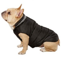 Casual Canine Black North Paw Puffy Dog Vest --- I like this for Jack: Paw Puffy, North Paw, Black North, Dogs, Canine Polyester, Casual Canine, Puffy Dog, Canine Black