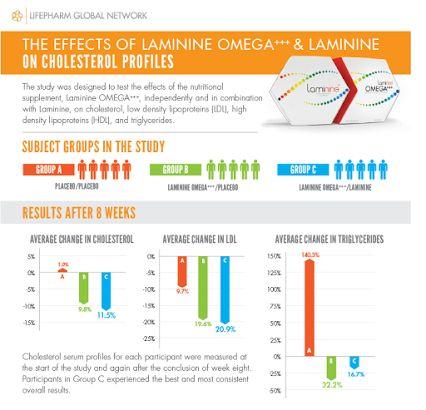 High cholesterol? Try Laminine OMEGA+++! #Cholesterol #LDL #HDL #Triglycerides #Laminine #Omega #Infographic  www.laminineomega.com