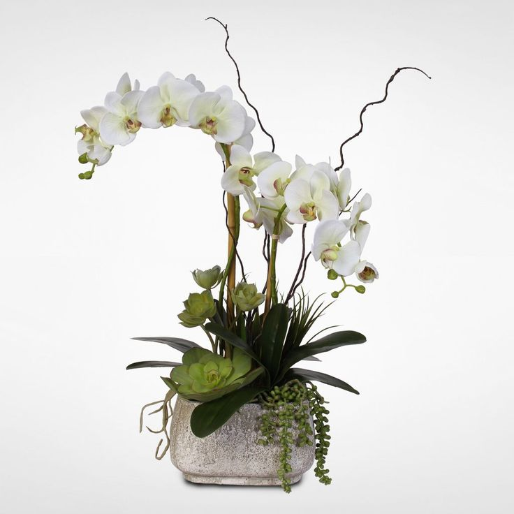 Real Touch Phalaenopsis Silk Orchid Arrangement with Succulents in a