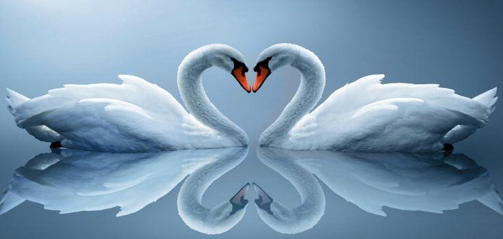 Vrije liefde; monogamie bestaat niet! Fleur via@urbanchicks