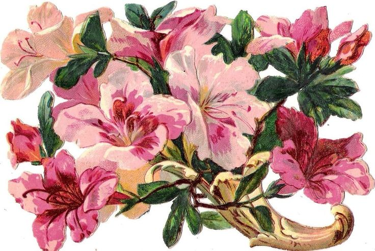 Oblaten Glanzbild scrap die cut chromo  Blume flower  14,2  cm