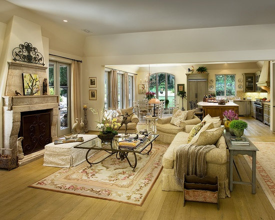 french country design pictures remodel decor and ideas page 20 - Modern French Living Room Decor Ideas