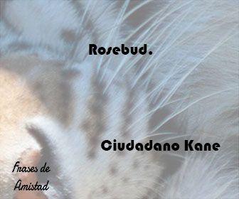 Frases de peliculas famosas de Ciudadano Kane
