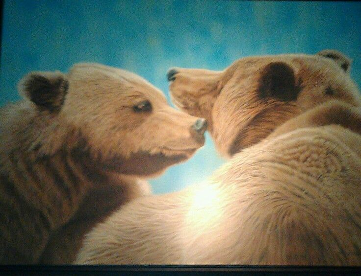 Kissing Grizzly Bears by Lynn Pocklington hung at Wood Restaurant across from Pemberton Gateway Village Suites Hotel