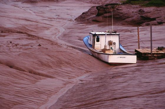 A fishing boat sits at low tide on the Bay of Fundy near Sackville, N.B