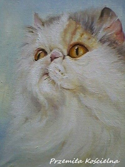 Beautiful persian cat portrait! Your belowed CAT, DOG or another PET PORTRAIT from photos  Oil painting on canvas  size 12 x 16 inch (30x40 cm)  I will cerate your pet portrait from your photos. If you don't have a very good photographs do not worry. I can do the reconstruction #cat #pet #portrait #custom #oilpainting #canisartstudio