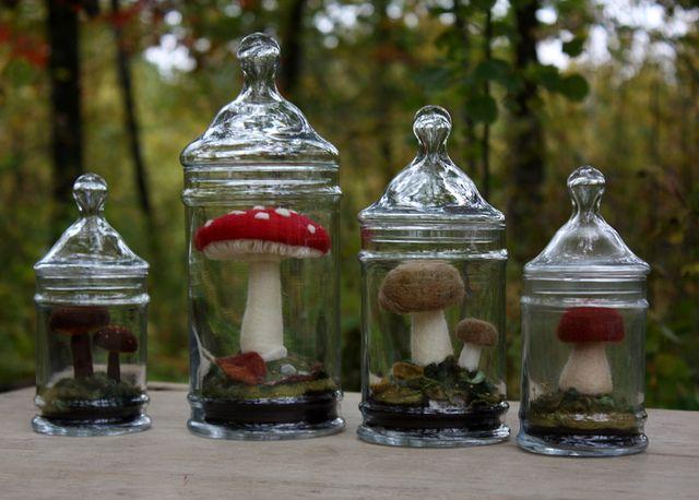 Fabulous fungi!