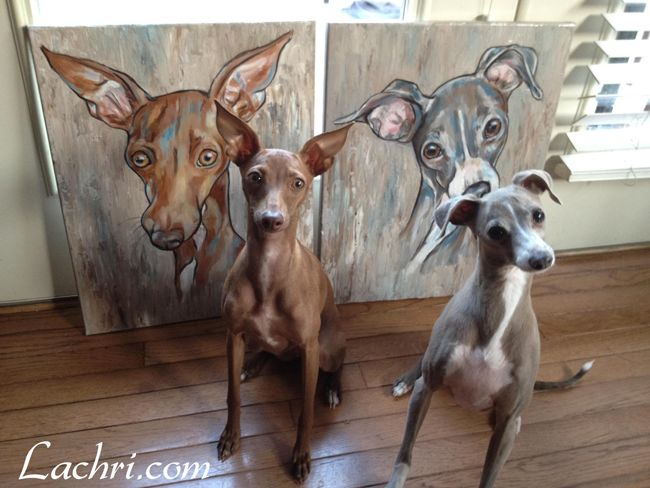 Italian Greyhounds painted in acrylic