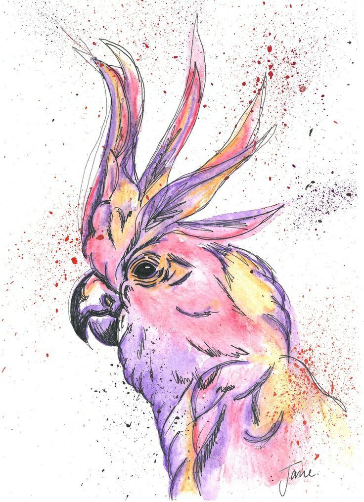 Cockatoo By Jane Burton
