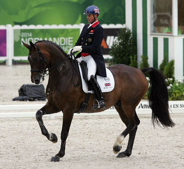 JEREZ DE LA FRONTERA, Spain, Mar. 4, 2016--Great Britain's Carl Hester on Nip Tuck won the CDI3* Grand Prix at the Royal Andalusion School of Equestrian Art Friday with Charlotte Dujardin on Barolo runner-up