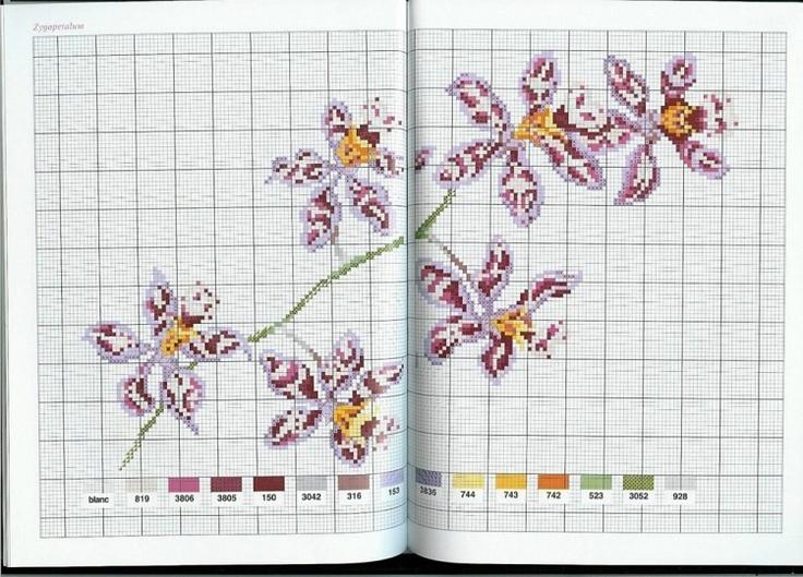 Gallery.ru / Фото #18 - Flower Variations - Mongia