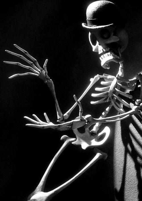 Stop Motion • Corpse Bride • Tim Burton