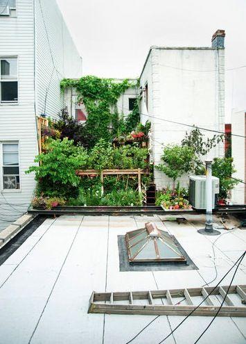 Small Urban Gardens: http://www.nytimes.com/slideshow/2012/07/19/garden/20120719-TINY.html#