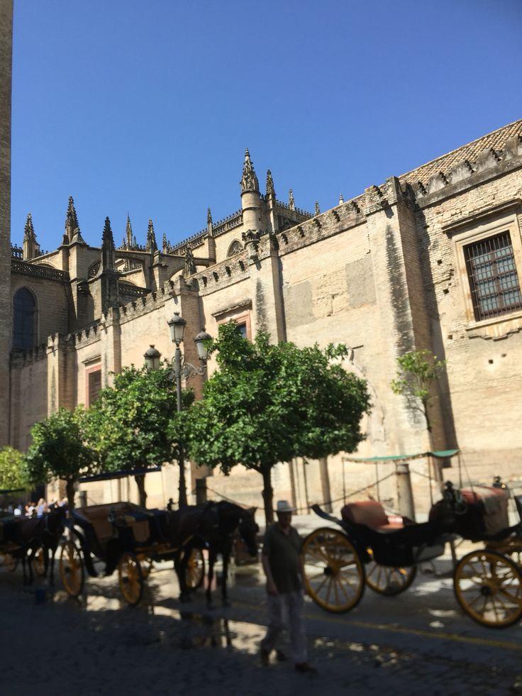 The Sevilla cathedral is gebouwd in de vorm van een vijfbeukige kruiskerk met kapellen en is van binnen 127 meter lang, 83 meter breed en 43 meter hoog. Daarmee is het na de Sint-Pietersbasiliek in Rome en de St Paul's Cathedral in Londen het grootste kerkgebouw van Europa en tevens het grootste gotische kerkgebouw ter wereld. De kathedraal van Sevilla heeft een uitzonderlijk rijke inventaris. Sinds 1987 staat zij op de lijst van Werelderfgoed van de UNESCO. Photo irma