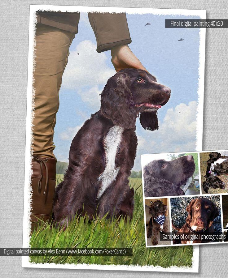 Dog Friendly B B Near Oban