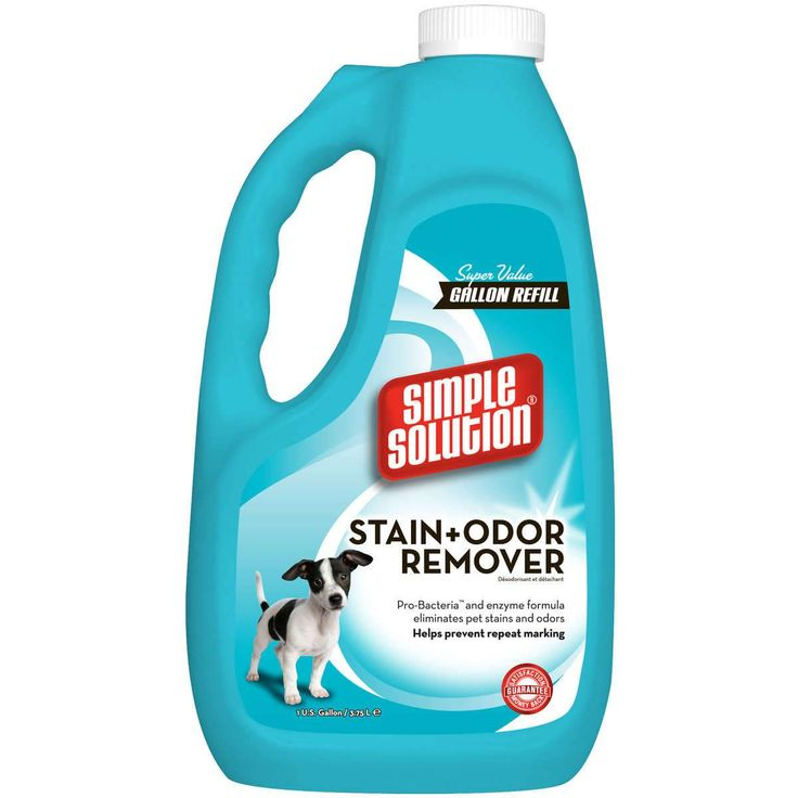 Simple Solution 11051-6P Stain and Odor Remover 1 Gallon